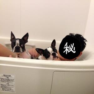 パパとお風呂☆