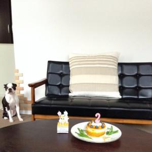 ゲーちゃま、お誕生日会☆